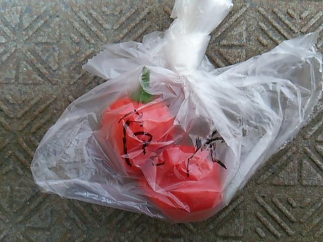 ぼっち村野菜ハバネロ袋