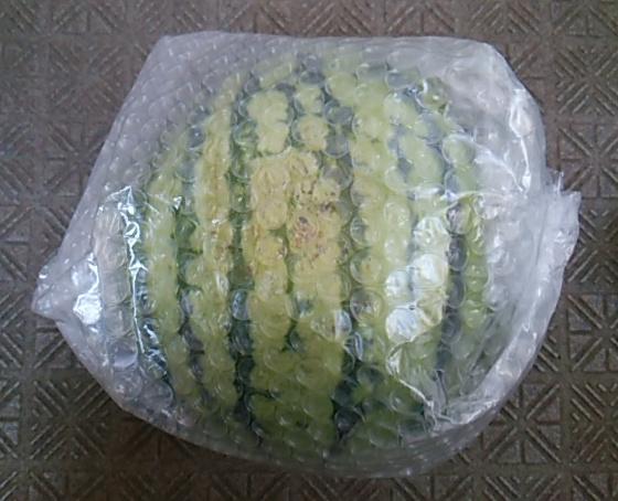 ぼっち村野菜すいか袋