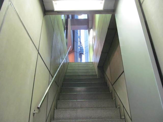 柏MUSIC_SUN2014階段を見上げると外
