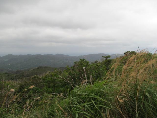 八重岳山頂付近からの眺めその2