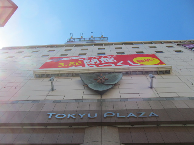 東急プラザ渋谷20150311入口から上を見る