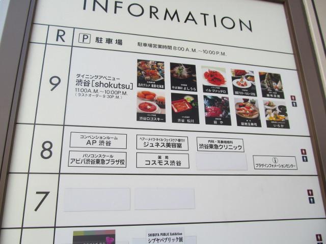東急プラザ渋谷20150317各階INFO3