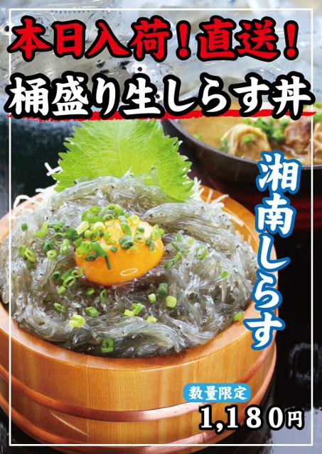 早川漁港漁師めし食堂朝獲れ桶盛り生しらす丼