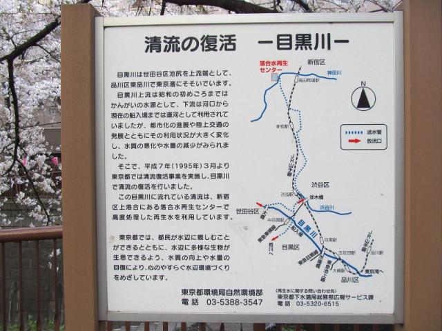 清流の復活目黒川の説明看板