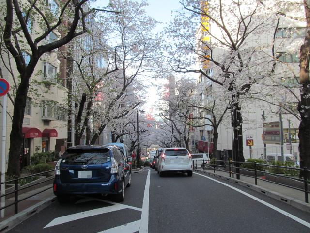 渋谷桜丘さくら通り右側かなり上から下を見る