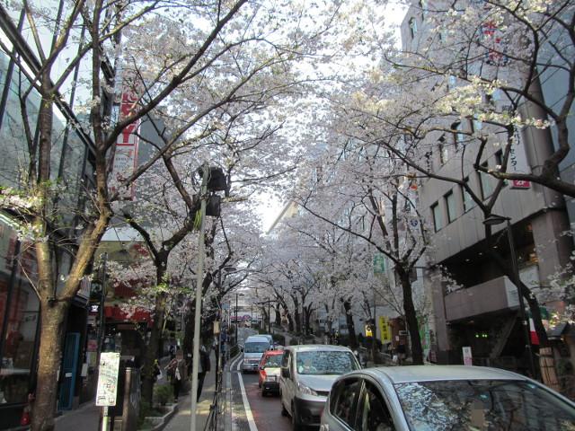 渋谷桜丘さくら通り坂下左側からちょっと上がる