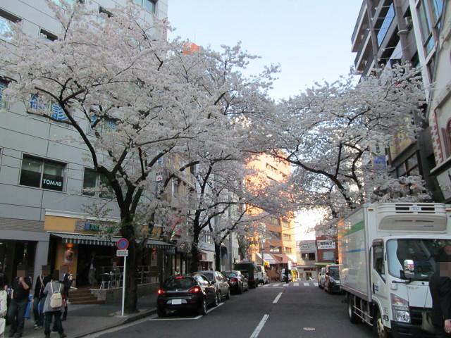 渋谷桜丘さくら通りふもとから恵比寿方面