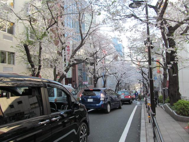 渋谷桜丘さくら通り左側を下りはじめる