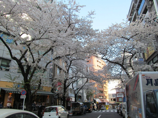 渋谷桜丘さくら通りを出て右を向く