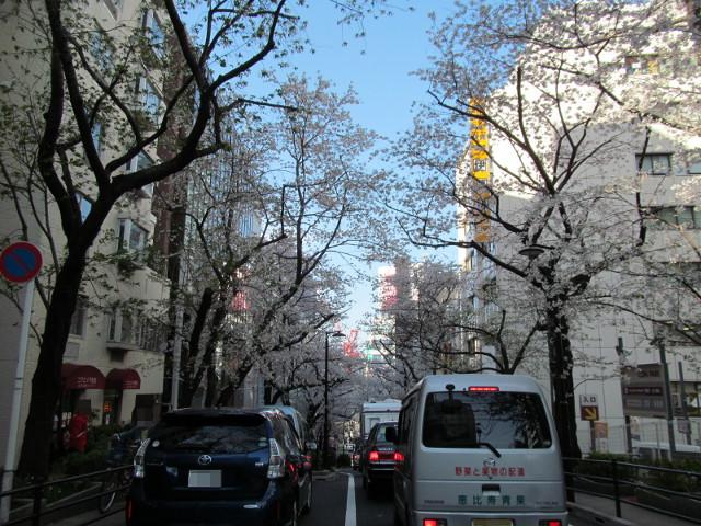 渋谷桜丘さくら通りかなり上から下を見る