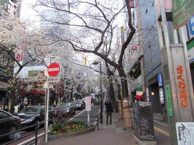 渋谷桜丘さくら通り坂下右側から