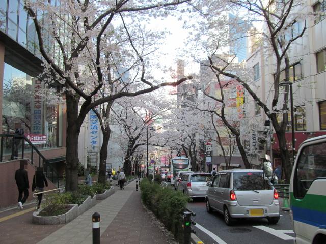 渋谷桜丘さくら通り右側上の方から下を見る