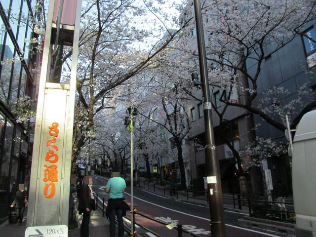 渋谷桜丘さくら通り坂下左側から