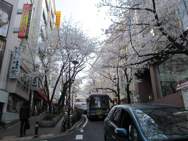 渋谷桜丘さくら通り左側を半分下って上を見る