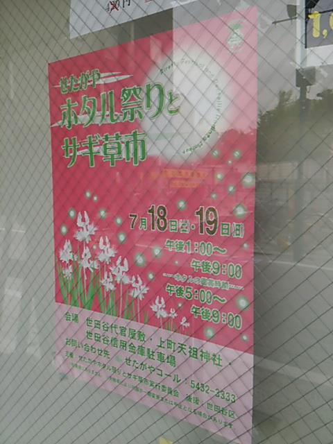 せたがやホタル祭りとサギ草市2015ポスター