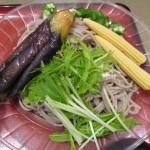 富士そば冷し夏野菜カレーつけ蕎麦サムネイル