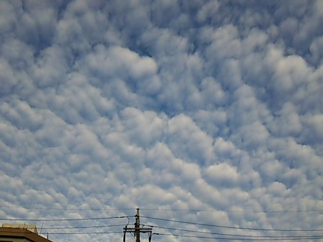 うろこ雲3_20150911