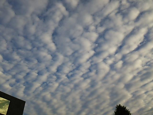 うろこ雲2_20150911