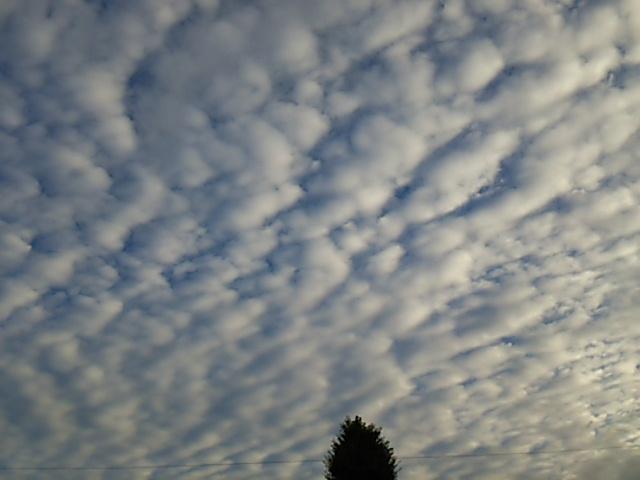うろこ雲1_20150911