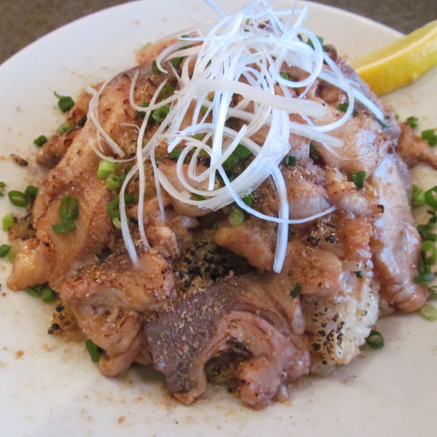イナセヤマーレ地魚たっぷり炙り飯大盛サムネイル