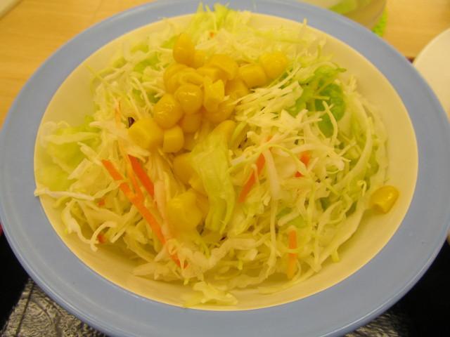松屋豚肉とたっぷり冬野菜炒めにつかないはずの生野菜