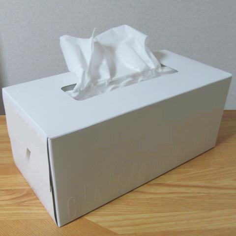 花粉症強く鼻をかむとよけい詰まるサムネイル