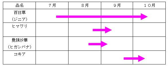富士花めぐりの里花畑開花時期カレンダー