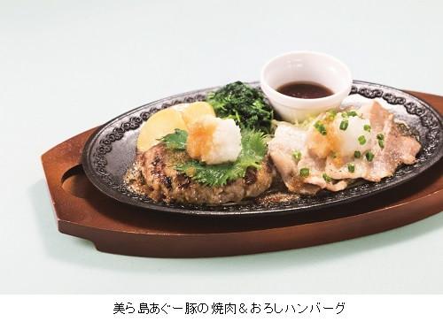 デニーズ美ら島あぐー豚の焼肉andおろしハンバーグ写真