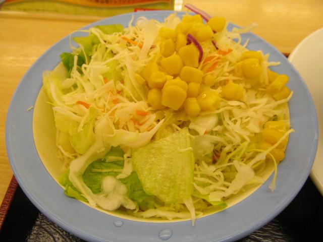 松屋茄子と豆腐と粗挽き肉の四川風麻婆定食の生野菜