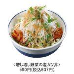 増し増し野菜の塩カツ丼and定食販売開始サムネイル