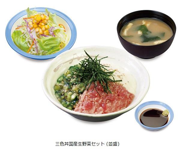 松屋三色丼セット商品画像20160804