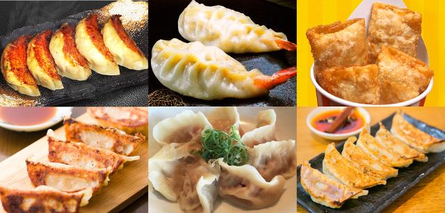 肉フェス餃子フェス福岡餃子出店の餃子20160815_640