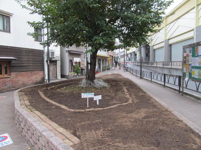 豪徳寺駅前のステージが特設される花壇20161028