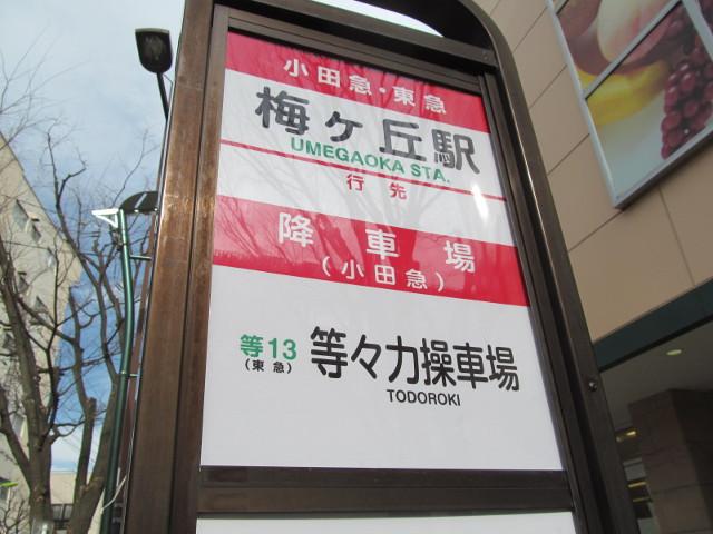 等13梅ヶ丘駅バス停オモテの上半分寄り20170127