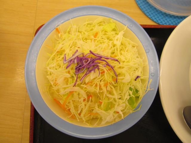 松屋ビーフシチューハンバーグ定食の生野菜
