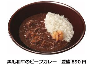 すき家黒毛和牛のビーフカレー商品画像20170310