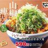 【続報】かつやシビれ山椒のぶっかけ青ネギカツ丼and定食販売開始サムネイル