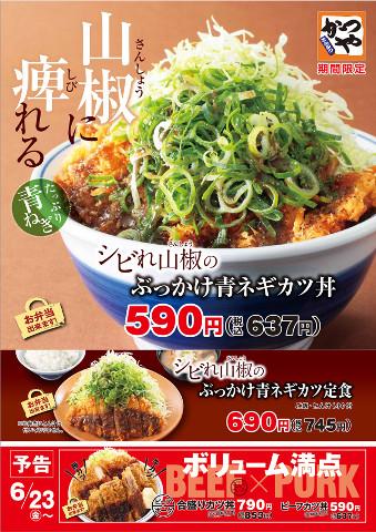 かつやシビれ山椒のぶっかけ青ネギカツ丼ポスター画像480_20170526