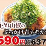 かつやシビれ山椒のぶっかけ青ネギカツ丼and定食販売開始サムネイル
