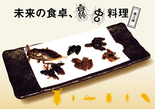 米とサーカス_昆虫料理第3弾メイン20180819