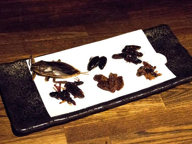米とサーカス_昆虫6種食べ比べセット2018_20180819