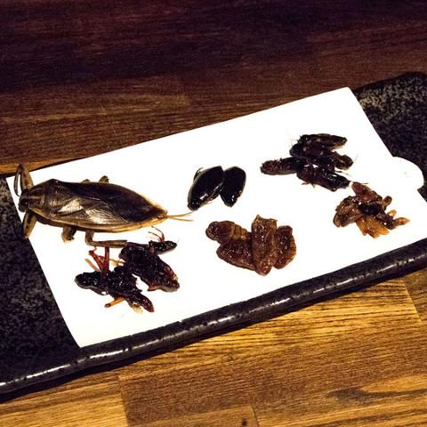 米とサーカス昆虫6種食べ比べセット2018サムネイル