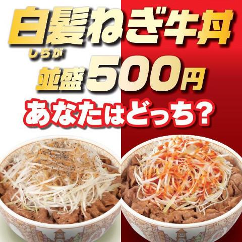 すき家白髪ねぎ牛丼2018販売開始サムネイル