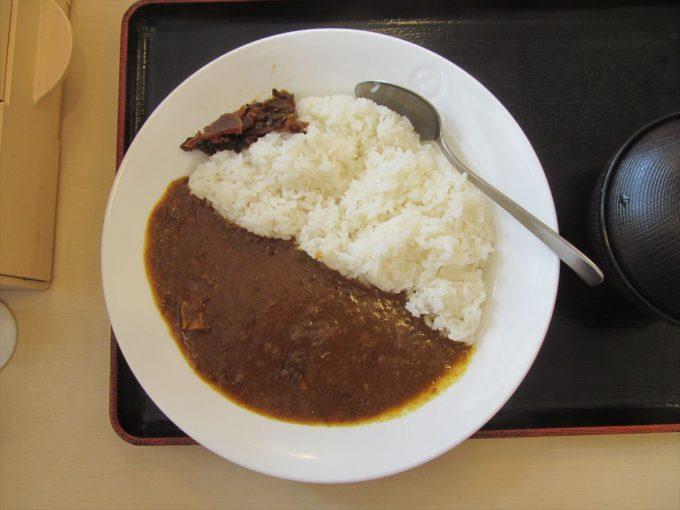 matsuya_sogyo_beef_curry_20190604_033