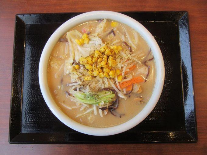 marugame-seimen-chanpon-udon-20191014-078