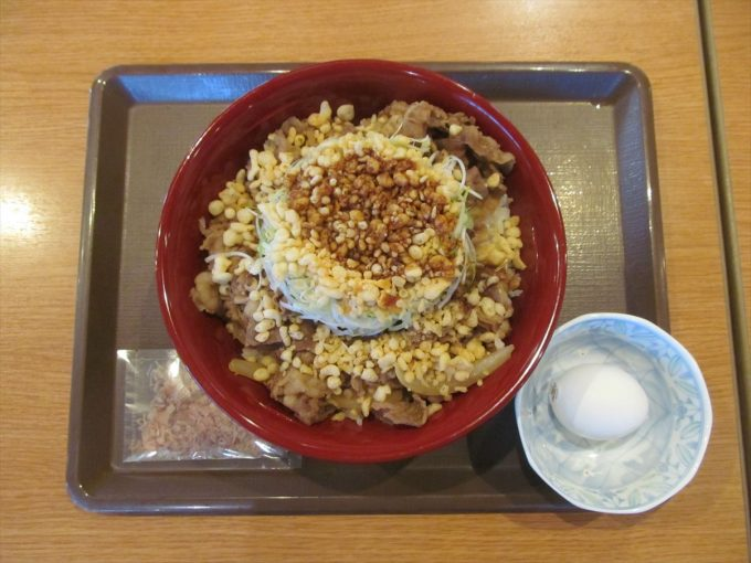 sukiya-shiraganegi-agedama-ontama-20191225-026