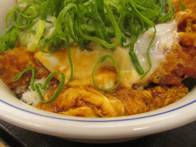 katsuya-aonegi-miso-chicken-cutlet-20200108-052