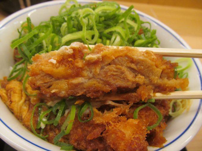 katsuya-aonegi-miso-chicken-cutlet-20200108-061