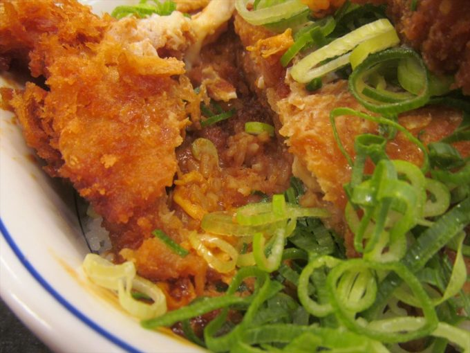 katsuya-aonegi-miso-chicken-cutlet-20200108-074