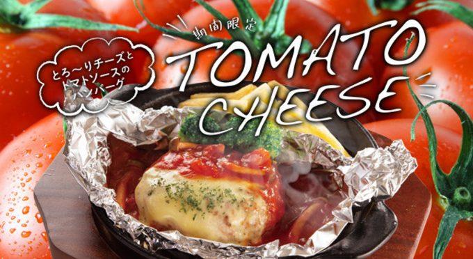 宮本むなし_トマトandチーズハンバーグ定食2020_WEB用メイン_1205_20200403